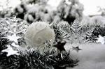 Wir wünschen allen frohe Weihnachten und einen guten Rutsch!